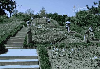 פארק בקוריאה שכל הפסלים קשורים בסקס