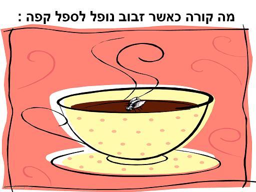 הזבוב והקפה