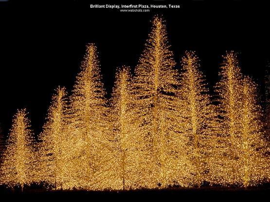 תמונות מחג המולד