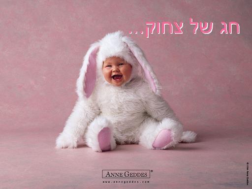 חג אביב שמח לכולם