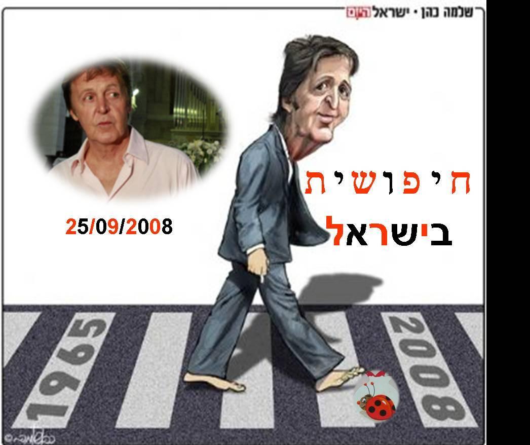 """""""חיפושית"""" בישראל !"""
