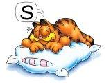 תנוחות שינה