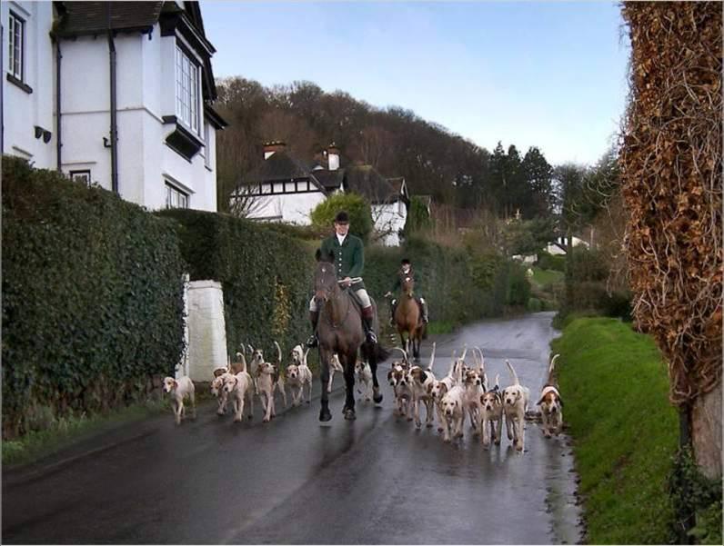 כפריים טיפוסיים באנגליה