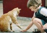 חיות ואנשים > אהבה מיוחדת
