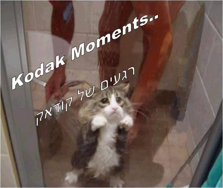 רגעים של קודאק/Kodak Moments..