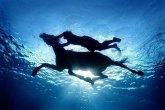 סוסים מדהימים בנופים מדהימים!!!