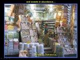 סוריה 2008