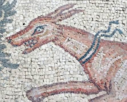 פסיפס הציפורים ליד קיסריה
