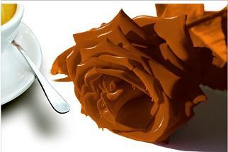 אומנות השוקולד