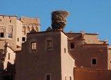 מרוקו  - מפגשים על אם הדרך