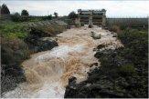 מיים בששון - מטיפות הגשם לנהרות המים ? פברואר 2009