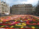שטיחים מפרחים
