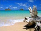 איים וחופים בעולם