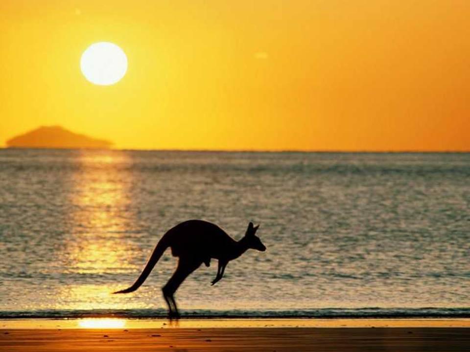 טיול לאוסטרליה
