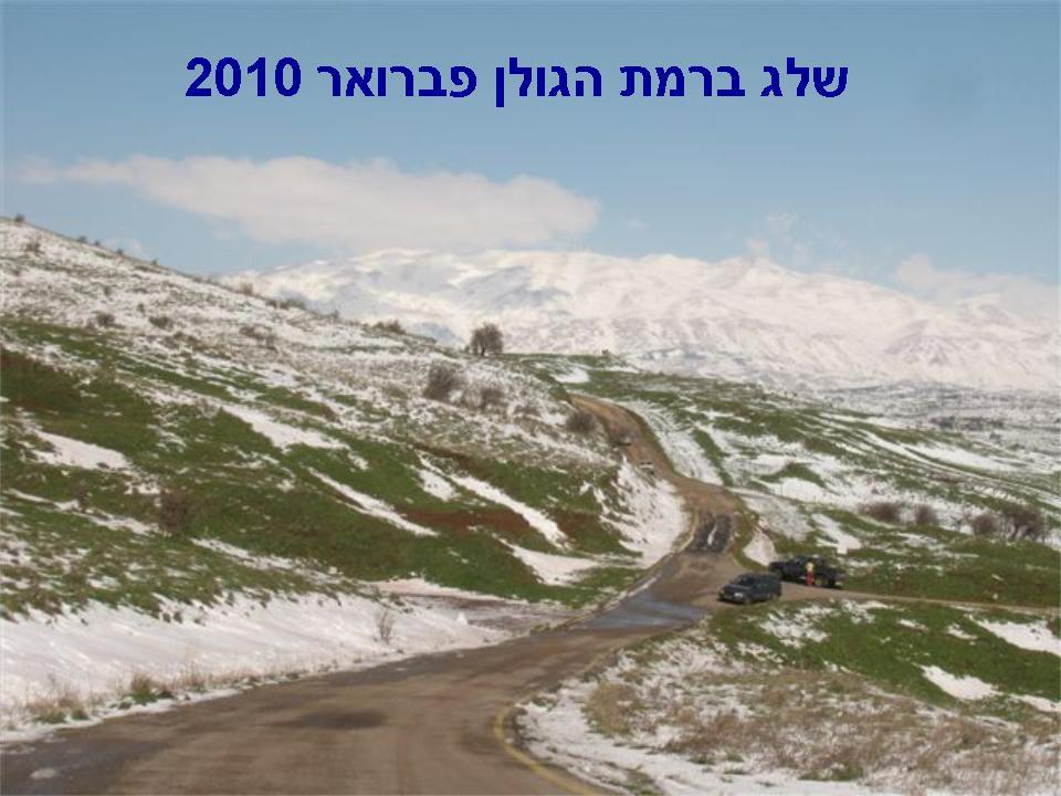 שלג ברמת הגולן פברואר 2010