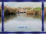 עמק בית שאן ויזרעאל