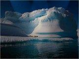 הקוטב הצפוני והדרומי