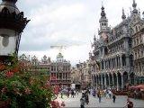 בריסל-בירת בלגיה