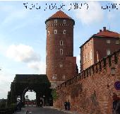 קראקוב-פולין