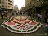 רחובות מכוסים בפרחים באיטליה