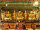Buddhist Temple Images