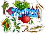 שבעת המינים -  שבחה של ארץ ישראל