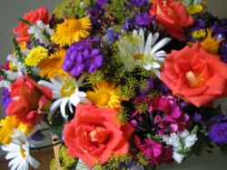 פסדנה פרחים בתהלוכה