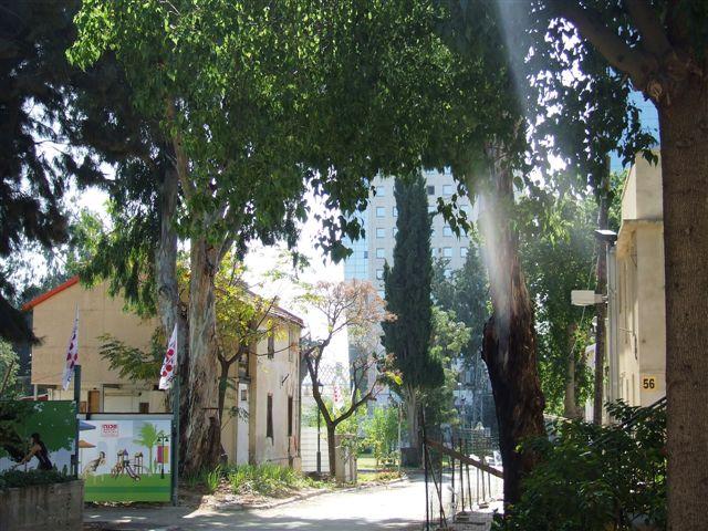 סיור במושבה שרונה תל- אביב