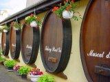 דרך היין באלזס