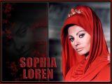 סופיה לורן