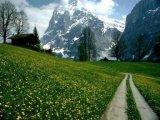 נופי שווייץ