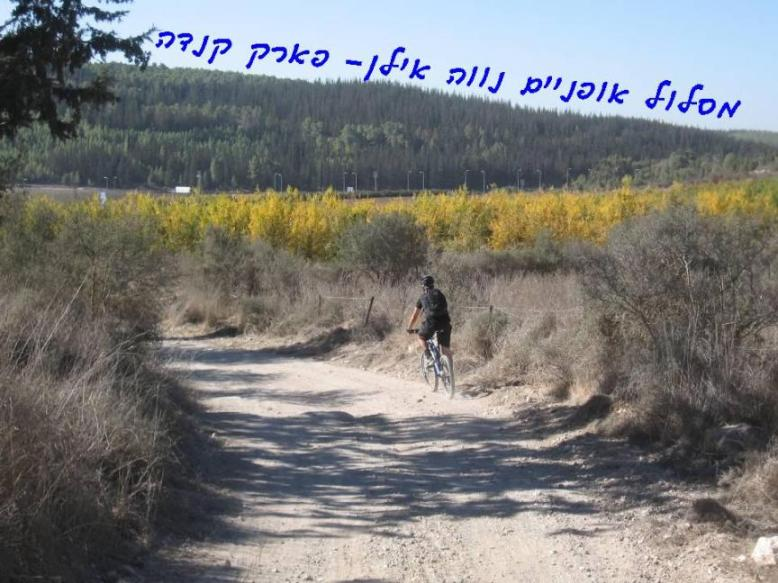 מסלול אופניים מנווה אילן לפארק קנדה ובחזרה