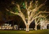 """אורות חג המולד של ערים בארה""""ב"""