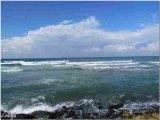נד מים בחוף תל אביב