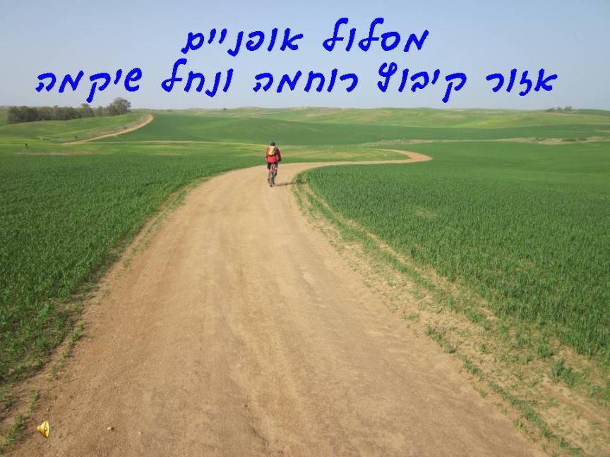 מסלול אופניים - קיבוץ רוחמה ונחל שיקמה