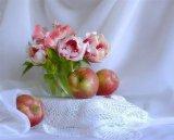פירות ופרחים