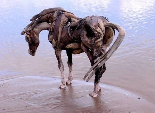 סוסים מעץ
