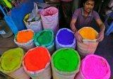 הולי - פסטיבל צבעים בהודו