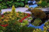 Queen Elizabeth Park- Vancouver