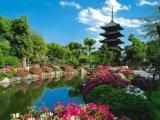 יופיו של הטבע היפני