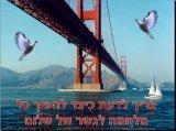 גשרים של שלום