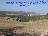 מסלול אופניים - בית נקופה- הר אדר- יד השמונה