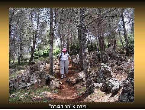 שביל ישראל - סיור מס 13 - מכפר שיבלי למשהד
