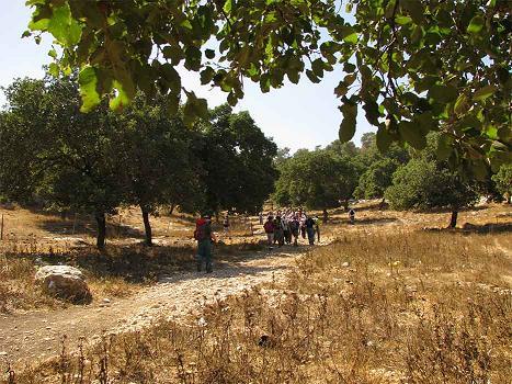 שביל ישראל סיור מס 15 - מצומת יפתחאל עד גבעת עליל