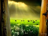 Fine Art Photos by Igor Zenin