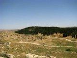 שביל ישראל מס 38 - משולי יער מיתר עד בית היערן ביער מיתר