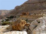 שביל ישראל מס 46 - מראש נחל מעלה עד עין ירקעם