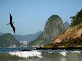 Hills of Rio