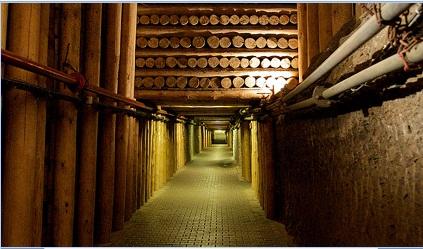 מכרות מלח מיוחדים בפולין