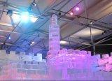 ממלכת הקרח